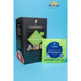 Tee-Pyramide Bio Glücksdrache