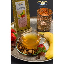 Bio Früchtetee Erdbeer-Banane-Joghurt 100g